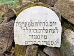 Die Vertreibung des Rabbiners Simon Goldberger und das Genisagrab