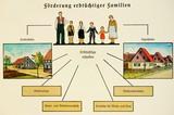Studie Ina Friedmann: Zwangssterilisierungen und Zwangskastrationen im Gau Tirol- Vorarlberg