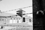 Internationaler Holocaust-Gedenktag (27.1.)  Veranstaltungsübersicht