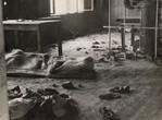 """Flucht vor dem sicheren Tod - Heute vor 76 Jahren fand die """"Mühlviertler Hasenjagd"""" statt."""
